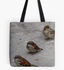 Three baby Tote Bag
