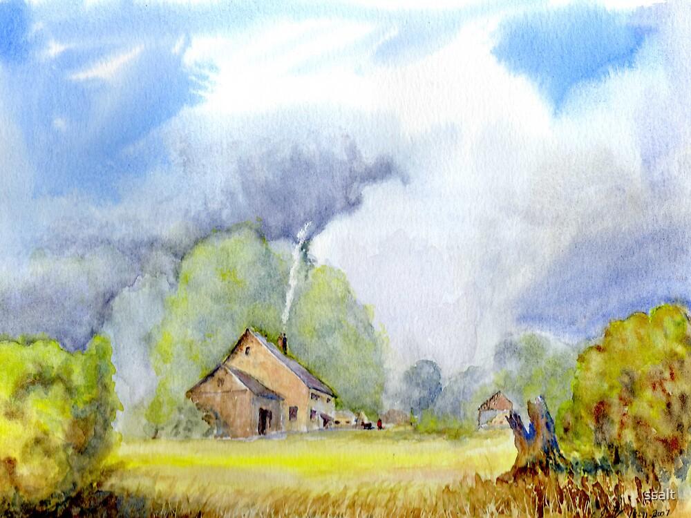 Childhood Memories Of a Hill farm by ssalt