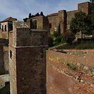 Alcazaba De Malaga by wiggyofipswich