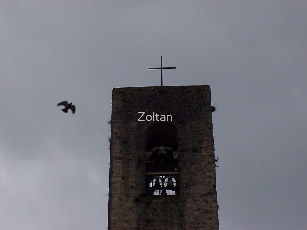 San Gimignano  by Zoltan