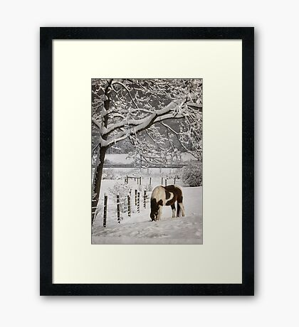 Paint in the Snow Framed Print