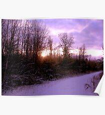 Purple Winter Poster