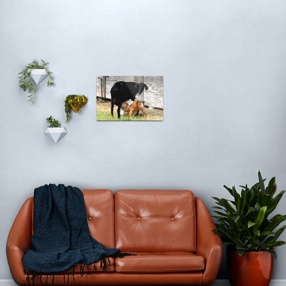 A Double shot of Cappuccino Metal Print