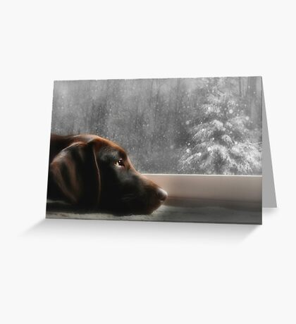 Dreamin' of a White Christmas... Greeting Card