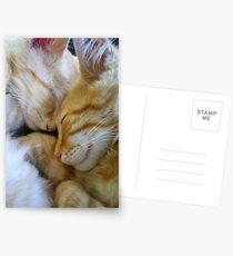 Snuggle Kittens Postcards