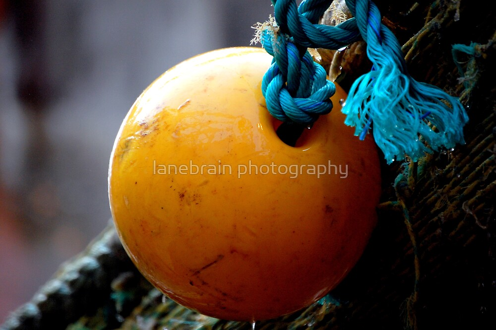 Isolation by lanebrain photography
