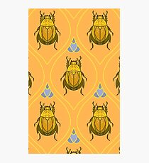 Yellow Beetle  Photographic Print