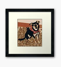 Chevy, the Bandito Framed Print