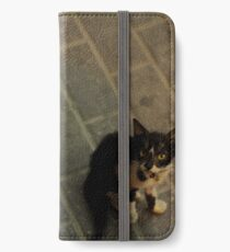 Cat and kitty iPhone Wallet/Case/Skin