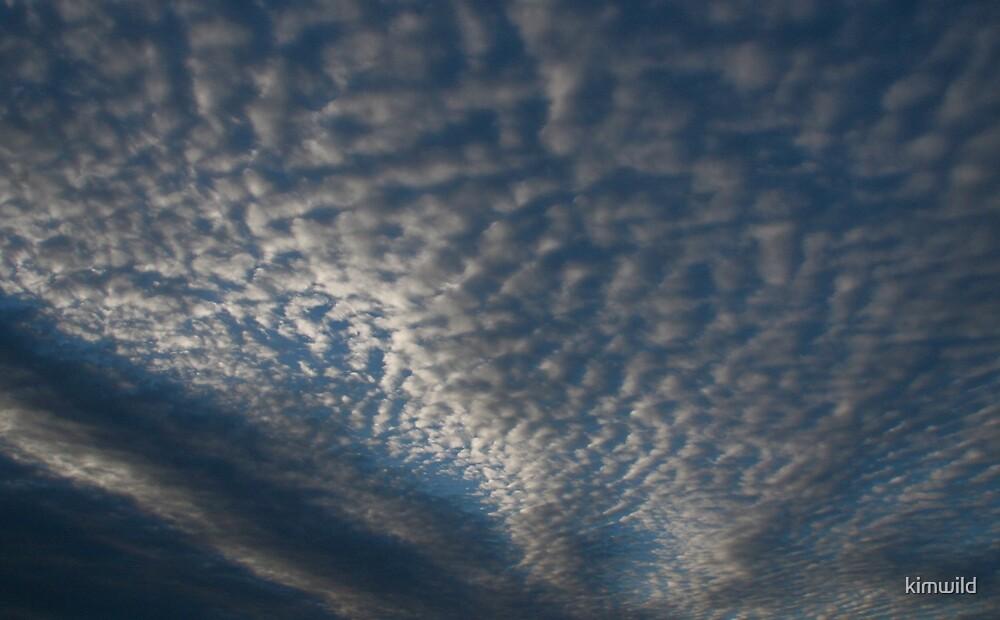 Cotton clouds by kimwild