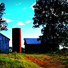 Farm buildings by Deidra  Scoggins