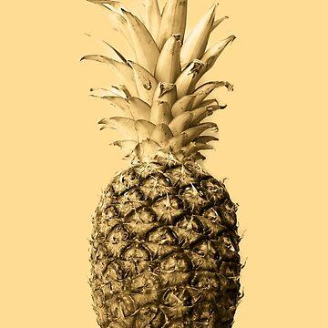 Pineapple 03 von froileinjuno