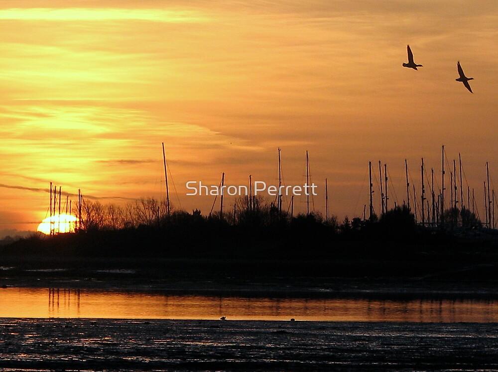 Sunrise (3) 25-11-07 by Sharon Perrett