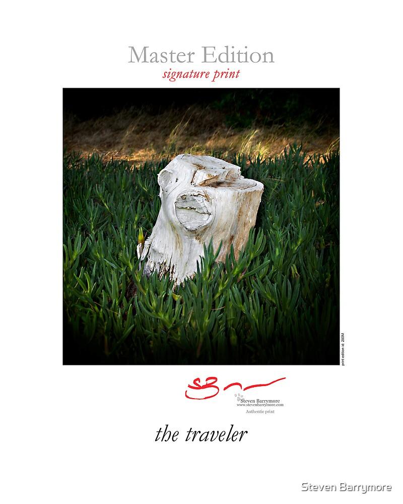 the traveler by Steven Barrymore