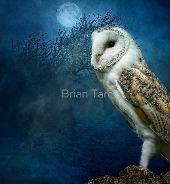 The Night Watchman by Brian Tarr