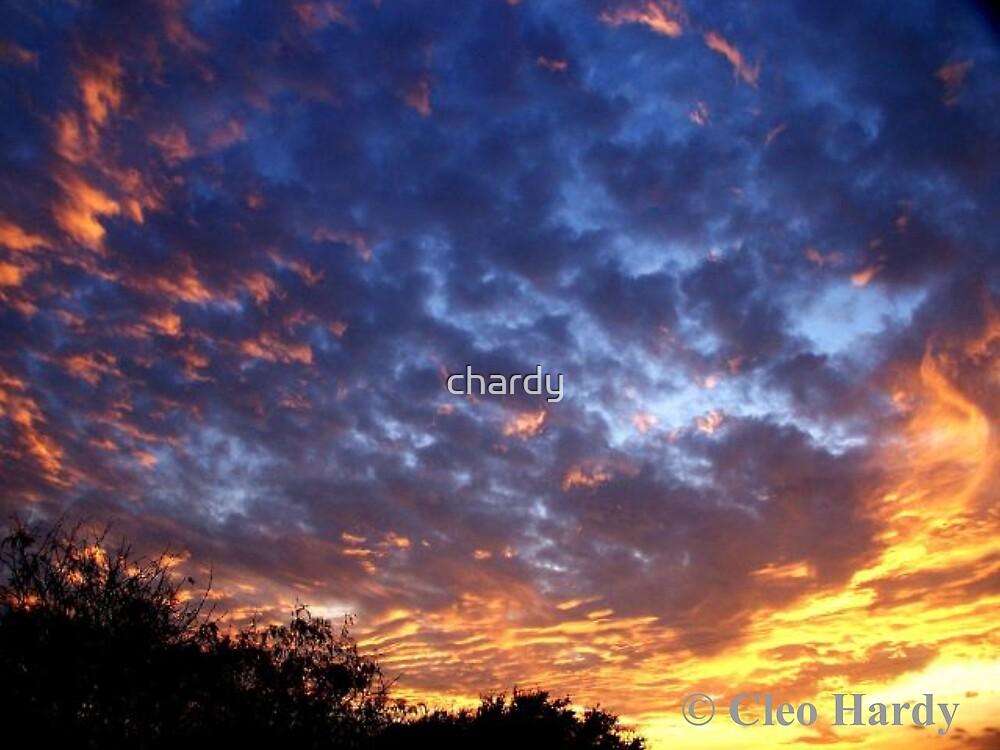Majestic Sky by chardy