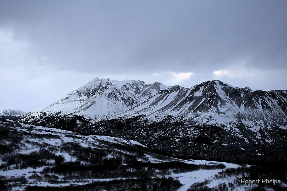Late November Snow by Robert Phelps