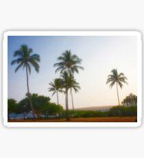 Park Palms Sticker