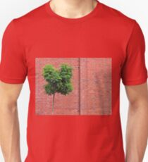 Red Bricks on a wall T-Shirt