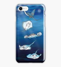 Rays - I iPhone Case/Skin