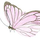 One little pink butterfly, watercolour painting by Sandra O'Connor