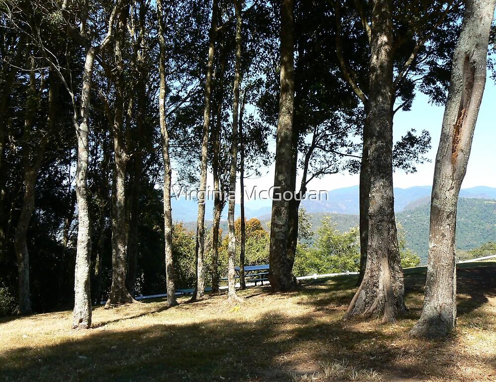Beechmont lookout #2 by Virginia McGowan