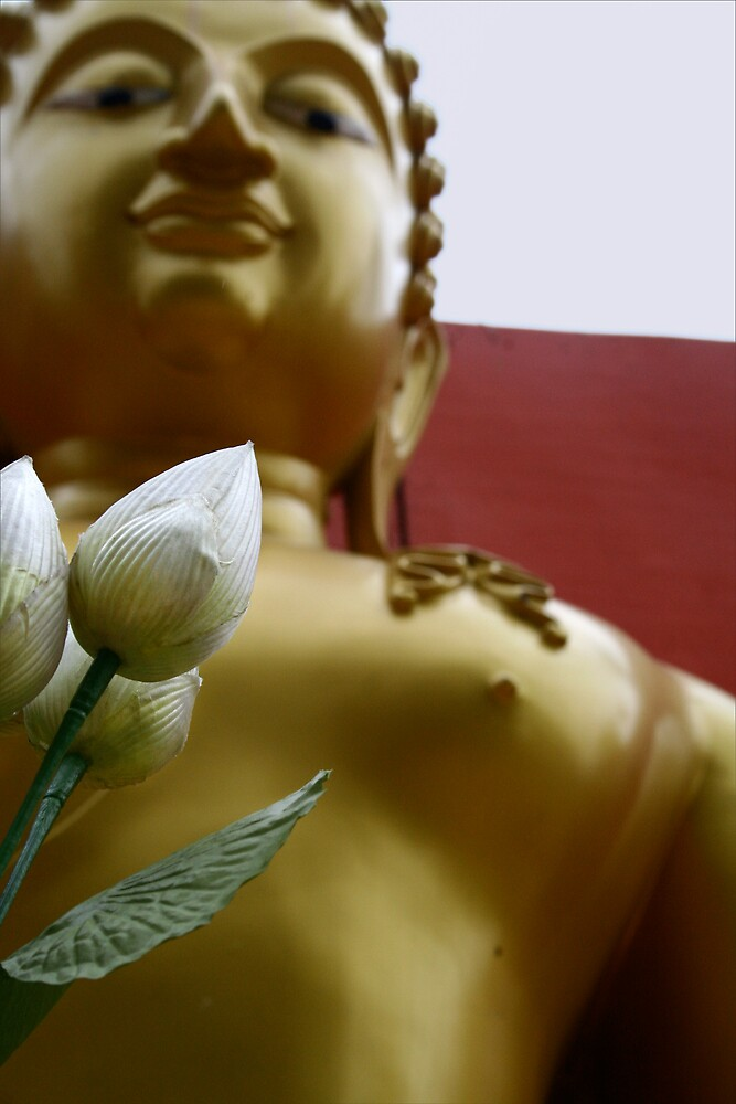 buddha by jonlunsford