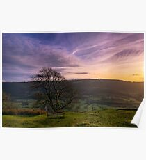 Tranquil View Poster
