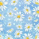 White chamomile daisies on blue art paper, watercolour painting by Sandra O'Connor
