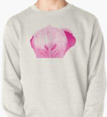 Elephant 01 Sweatshirt