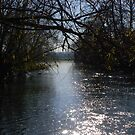 River Thames at Wolvercote by Colin Walker