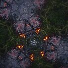 Fractal Fire Dances n°8 by edend