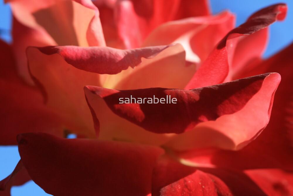 Hot Gossip by saharabelle