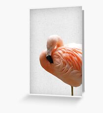 Flamingo 09 Grußkarte