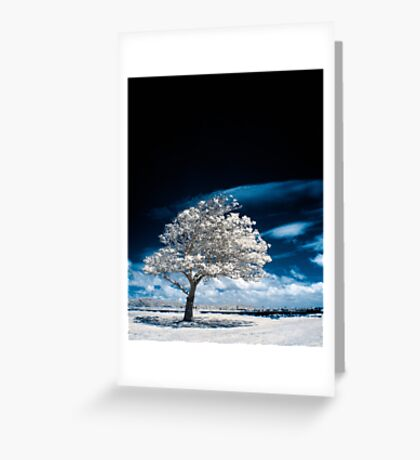 Beneath A Black Sky Greeting Card