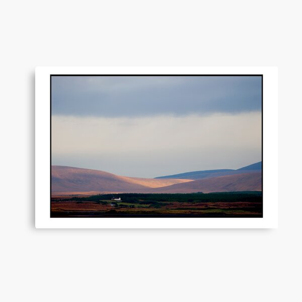 a day for the fire Canvas Print