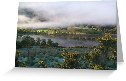 dawn mist  by dinghysailor1