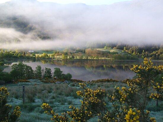 dawn mist  by dinghysailor1