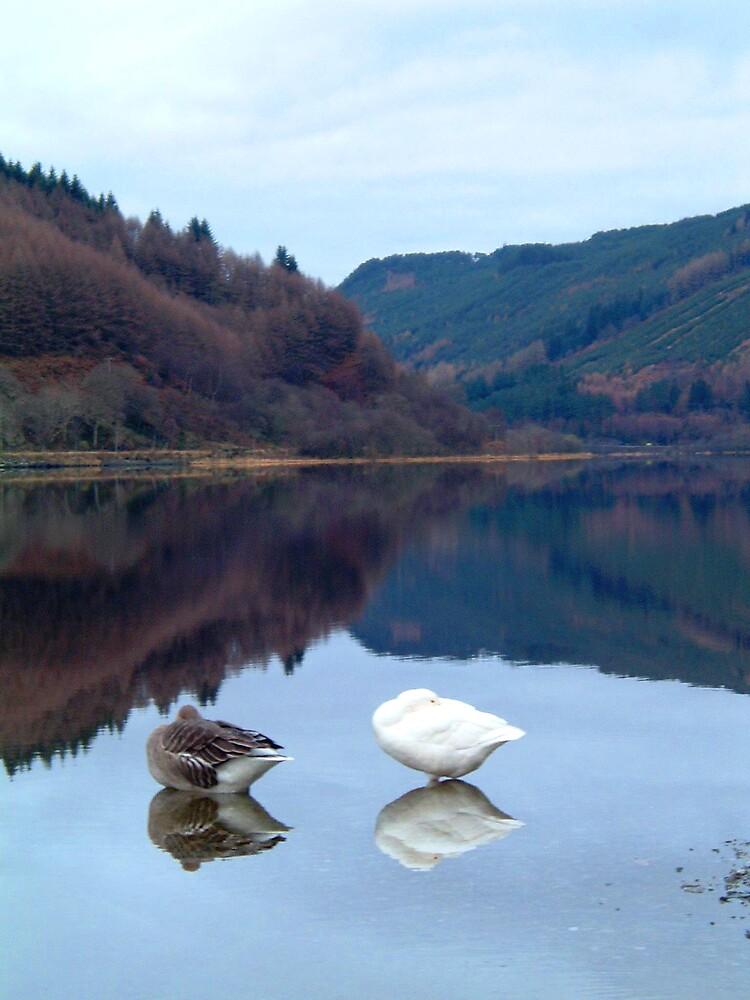 Loch Lubnaig by Puffling