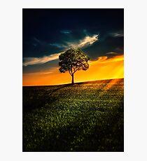 Beauty nature Photographic Print