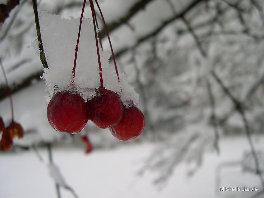 Berries 2 by Michelle Jarvie