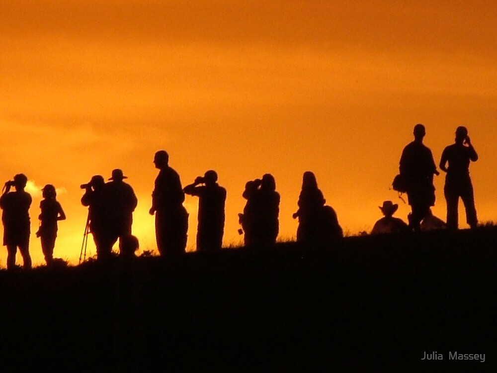 Watching grizzlies at sunset by Julia  Massey
