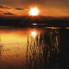 Sunrise by theonlyjill