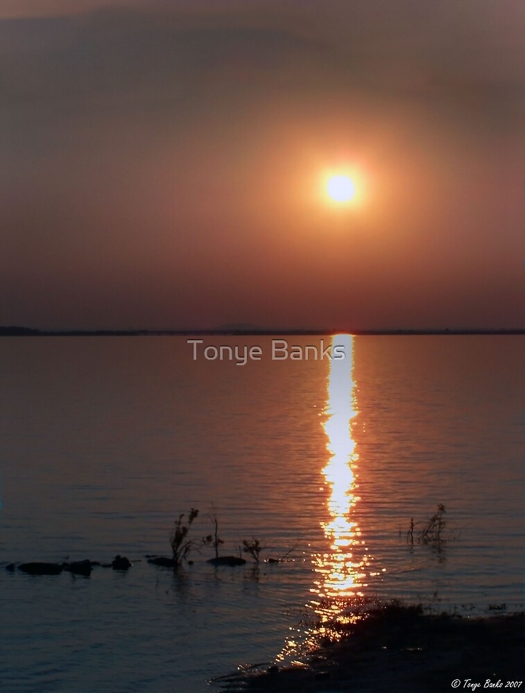 Belle Starr would be Proud by Tonye Banks