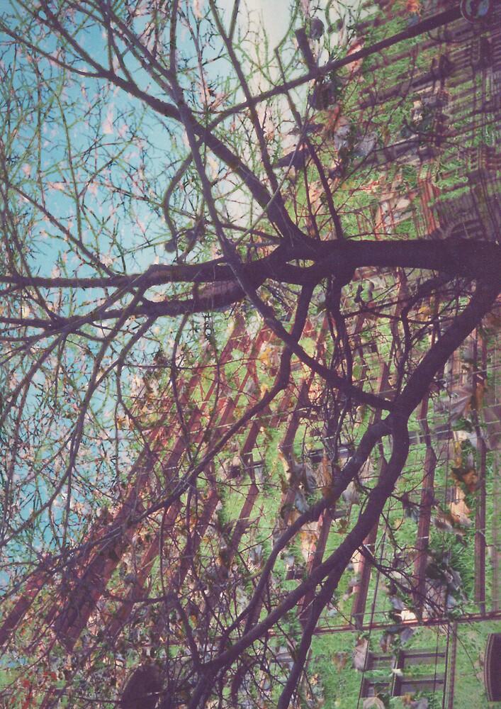 Streetscape by Monique Shalit