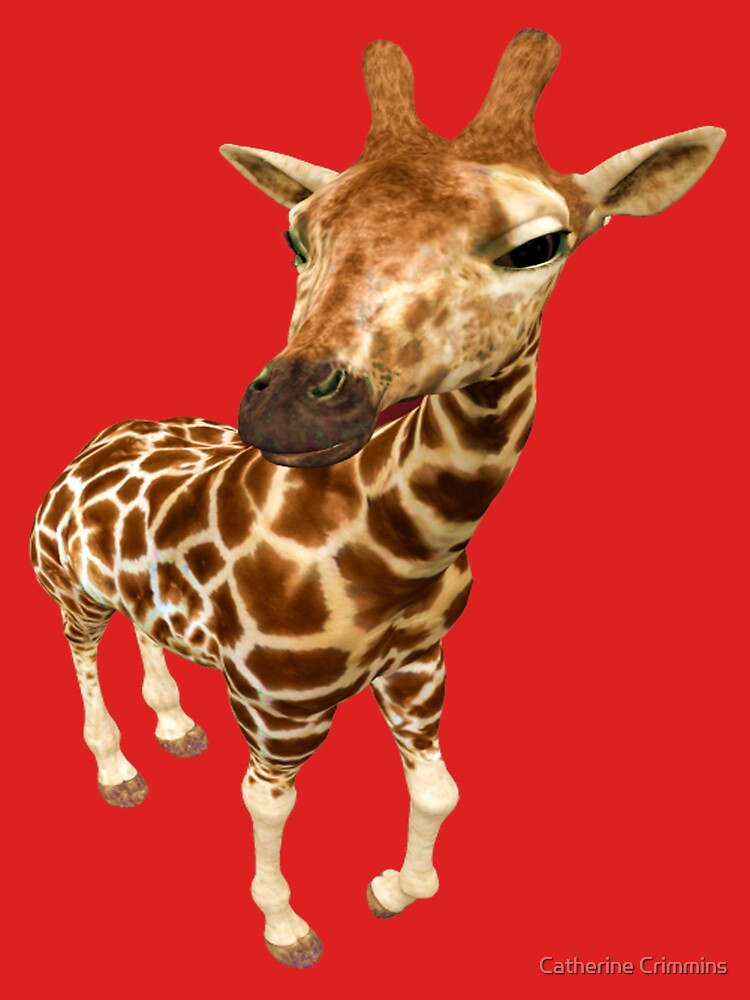 Hello--- baby Giraffe by catsbacknc