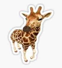 Hello--- baby Giraffe Sticker