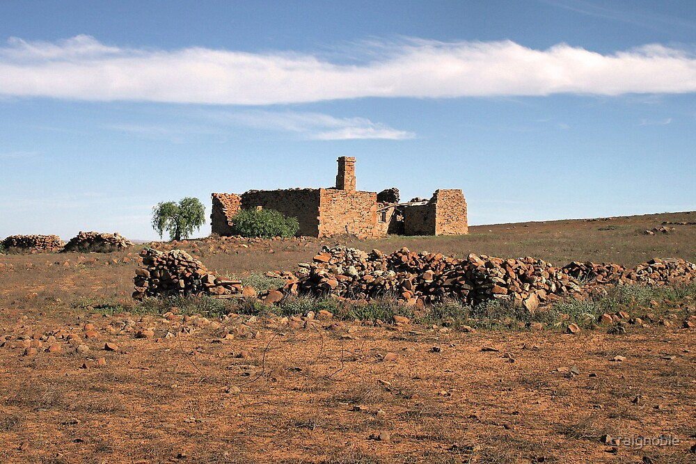 Outback Ruins by craignoble