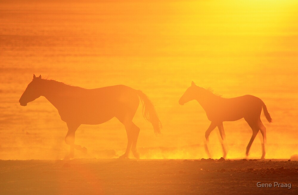 Sunset Walk by Gene Praag