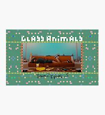 Glass Animals Season 2 Episode 3 Photographic Print